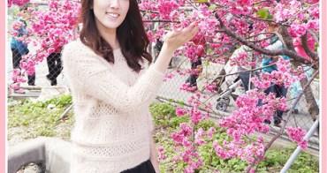 【❤台中】粉紅大逆襲!!警局邊有超美櫻花大道。泰安派出所