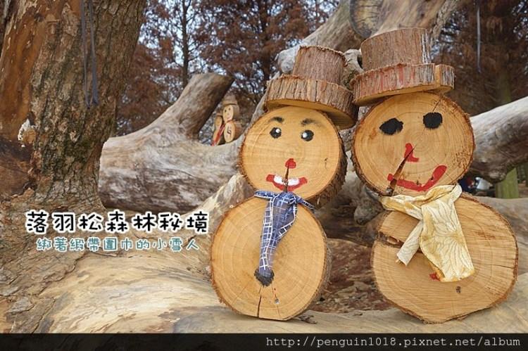 【南投市免費景點】森林裡可愛木頭緞帶圍巾小雪人,木製麋鹿、彩色木椅,北國美景怎麼拍都好浪漫!【南投落羽松森林】