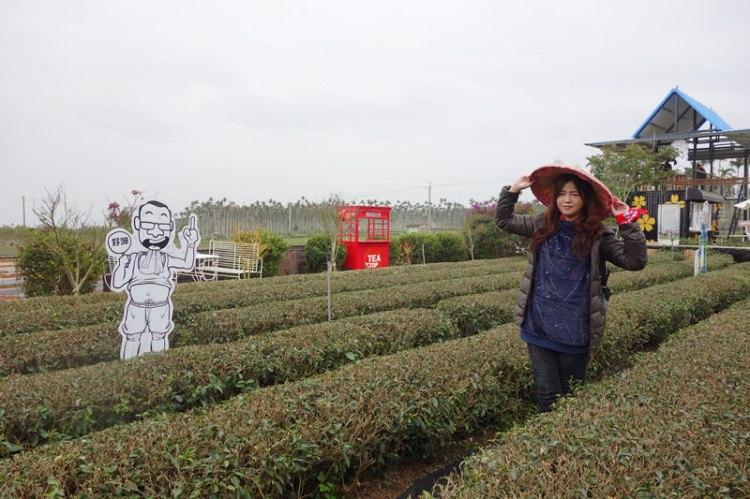 南投名間茶二指故事館|南投旅遊品茗園區,整片茶樹景色宜人,推薦美食花布餐盒,適合全家出遊。