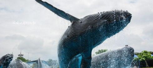 |親子旅遊|國立海洋生物博物館,走進隧道進入美麗的海底世界