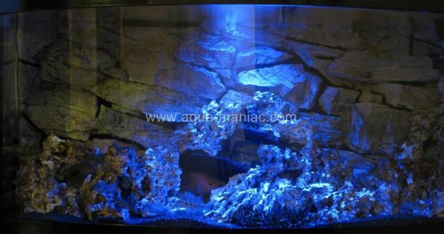 aquarium background 120 x 60 juwel aquarium background. Black Bedroom Furniture Sets. Home Design Ideas