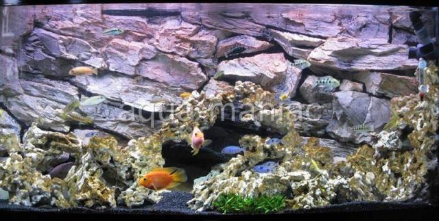 about JUWEL RIO 3D ROCK STONE AQUARIUM BACKGROUNDS FOR FISH TANK