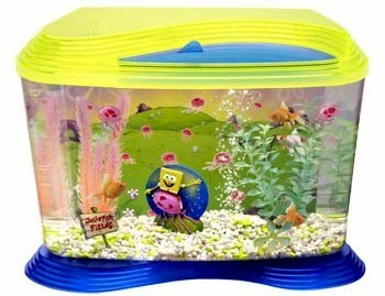 Up for sale is this NEW 6 gal childrens fish aquarium. Get yours today