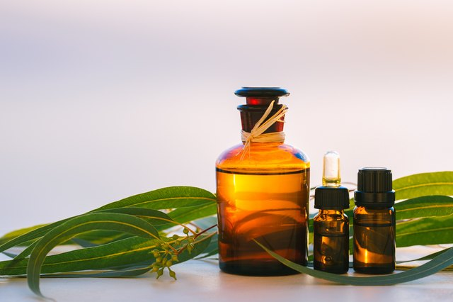 Eucalyptus oil is a natural bug repellent.