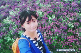 【台北】。關渡台北花海節IG網美打卡點 @紫色花海怎去?