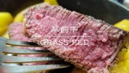 煮婦採買|草飼牛(放牧牛)跟穀飼牛要選哪一種?