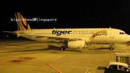新加坡自由行☼前往新加坡的廉價航空初體驗–虎航tigerair(原Tigerairways)