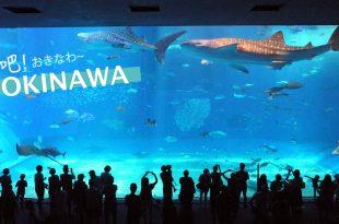 [LIVE] 沖吧!OKINAWA!沖繩一夏day02