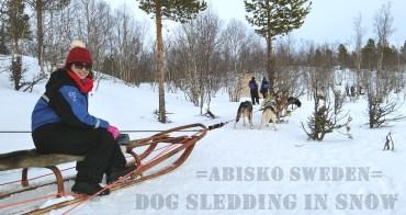 瑞典阿比斯庫景點 預約『Lapland Trip北極秘境極光之旅』體驗狗拉雪橇穿梭在Abisko極地森林裡的快感(內有影片)