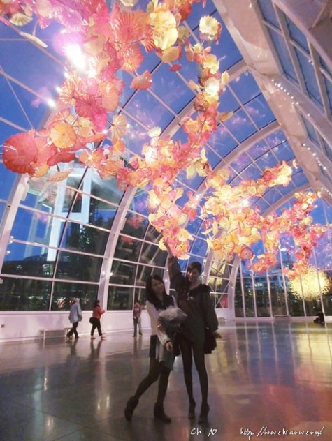 愛情西雅圖Seattle x 胡利Chihuly Garden and Glass x Elliott's