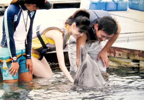 日本。冲绳岛国之与海豚有约的梦幻蜜月饭店