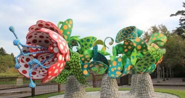 鹿兒島 霧島藝術之森 (霧島アートの森)- 與大型裝置藝術品面對面的大自然空間