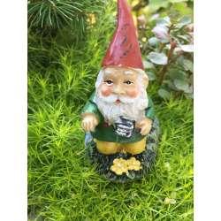Small Crop Of Mini Gnome Gardens