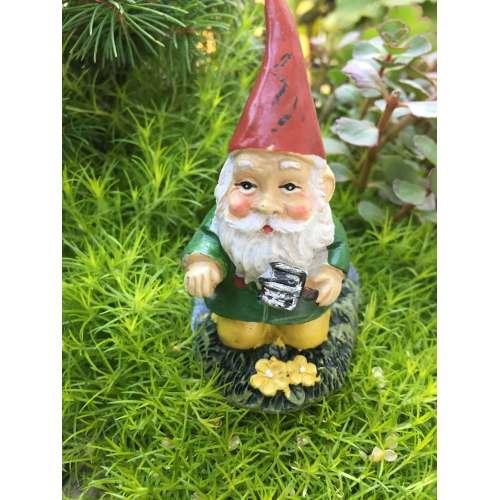Medium Crop Of Mini Gnome Gardens