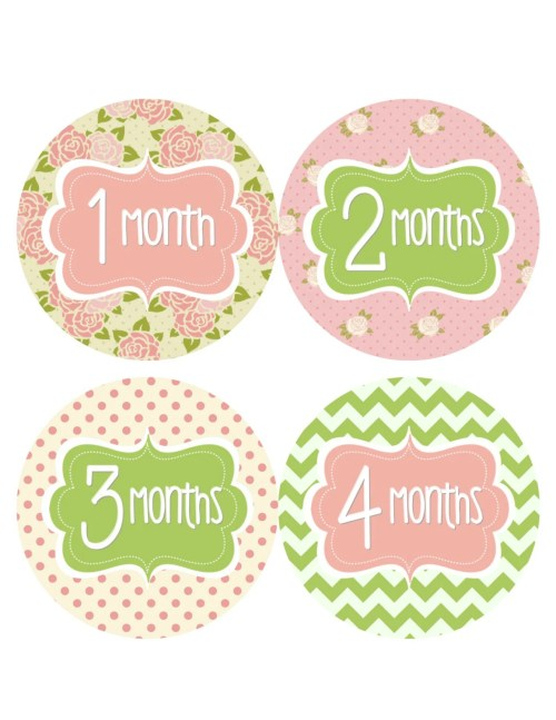 Cheery Monthly Baby Stickers Baby Monthly Stickers Girl Green Pink Floral Stickersinstant Download Printable Baby Shower Gift Photo Prop From Monthly Baby Stickers Baby Monthly Stickers Girl Green Pin