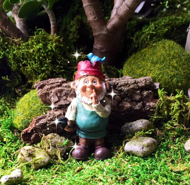 Scenic Fairy Garden Gnome Miniature Garden Miniature Gnome Miniature Garden Gnomes Miniature Garden Gnomes Kits garden Miniature Garden Gnomes