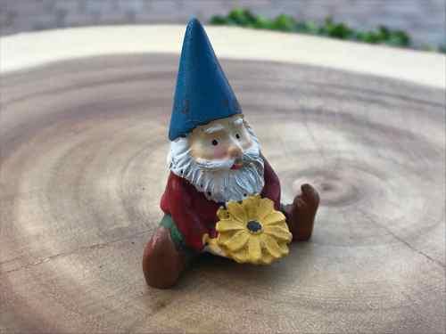 Medium Of Miniature Garden Gnomes
