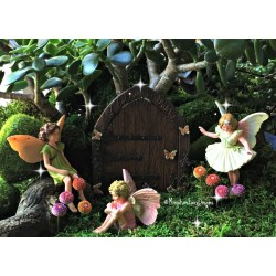 Small Crop Of Fairy Garden Flowers