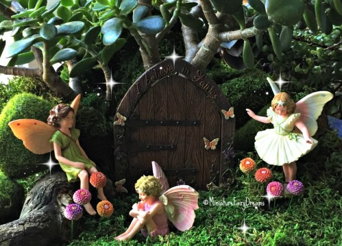 Medium Of Fairy Garden Flowers