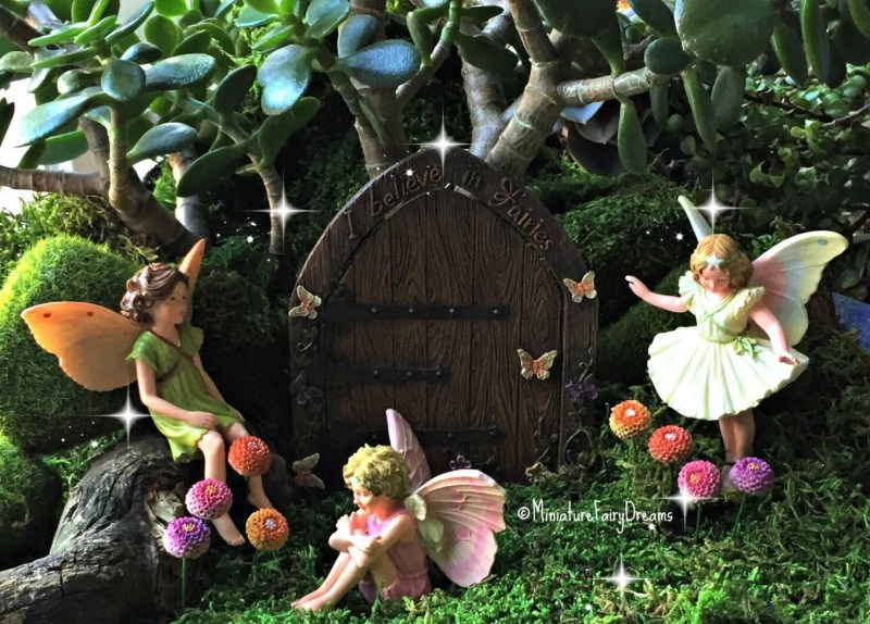 Large Of Fairy Garden Flowers