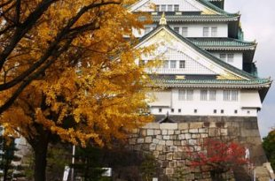 2011冬之京阪一個人小旅行~行前準備篇