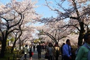 【熱血背包女】日本中部北陸住宿心得分享