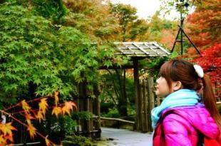 【熱血背包女】日本東北紅葉之旅Day8 (完) 日本三景之一-松島 乘船餵海鷗超有趣!