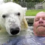 【萌え動画:白熊】世界一シロクマと中の良いおっさんw喧嘩したら一撃でアウト((((;゚Д゚))