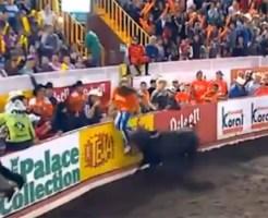 【衝撃映像:牛】女性が闘牛に後ろから突進されたホームラン!!