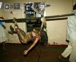 【レイプ殺人】散々レイプされた後惨殺された女性たち【画像16枚】