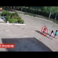 【閲覧注意】公園で楽しく遊んでた幼女達が倒れてきた脚立の下敷きになる一部始終・・・