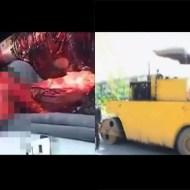 【閲覧注意】ロードローラーだっ!!(顔から轢き殺された女性・・・)
