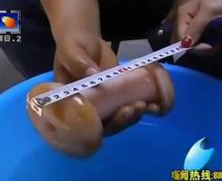 【安定の中国】新種のキノコが発見される!→オナホールでしたwww
