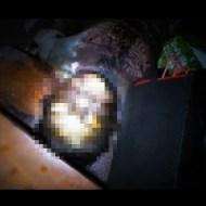 【閲覧注意】地下室に続く血の跡・・・それを辿って行くと・・・ ※動画有り