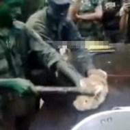 【グロ注意】ブラジル軍新兵がウサギの目を食べさせられる一部始終