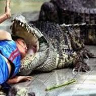【閲覧注意】ワニに襲われ川に引きずり込まれた少年!→救出するも手遅れ・・・