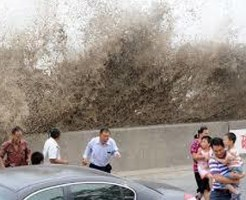 【DNQ】台風来てる時にわざわざ様子見に行って死んでる人ってだいたいこんな感じ ※動画あり