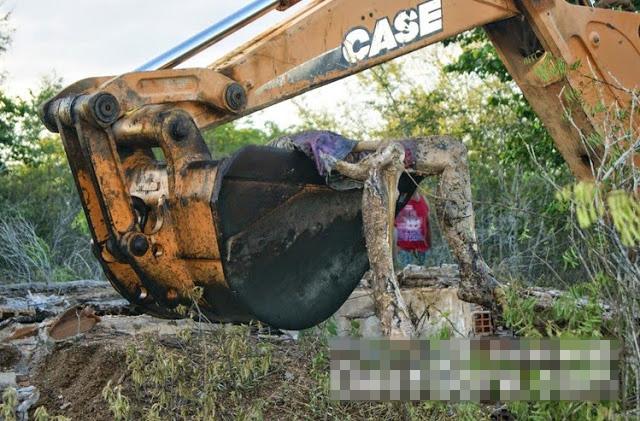 【グロ画像】貯水槽の中を出してみたら腐った●●が出てきた・・・