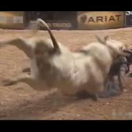【衝撃映像】闘牛と戦ってボロ雑巾にされたDQNを集めてみたw