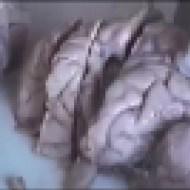 【人肉】中国の人肉加工工場インタビュー→法で禁止されてないからおkという見解・・・ ※衝撃映像