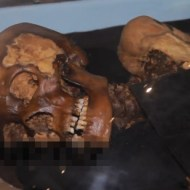 【閲覧注意】呪いをもたらして再埋葬された2500年前のミイラ「ウコクの王女」展に行ってきたw
