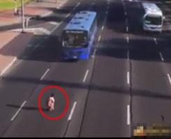 【衝撃映像】道路で命がけで遊んでる奴の動きが神がかってて感動したwww