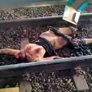 【閲覧注意】線路の上に首を置いて自殺した美女がおっぱい丸出しな件w