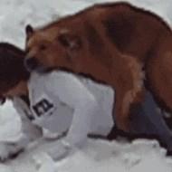【獣姦】ちょw飼い主こんな目で見てたんかwロリJC転倒したタイミングで飼い犬がマンコ掘りに行ったぞwww