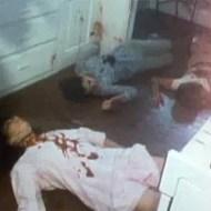 【閲覧注意】一家皆殺し事件の死体発見・・・川から引き揚げる一部始終