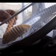 【衝撃映像】ハムスターには荷が重い!15tトラックの運転を任されたw