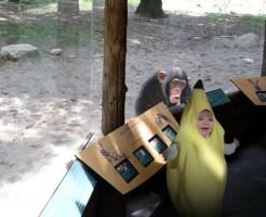 【おもしろ】動物と子供のなかよし画像とか動画の癒され方は異常
