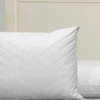 Club Le Med Quilted Pillows 2-pack for $29.99