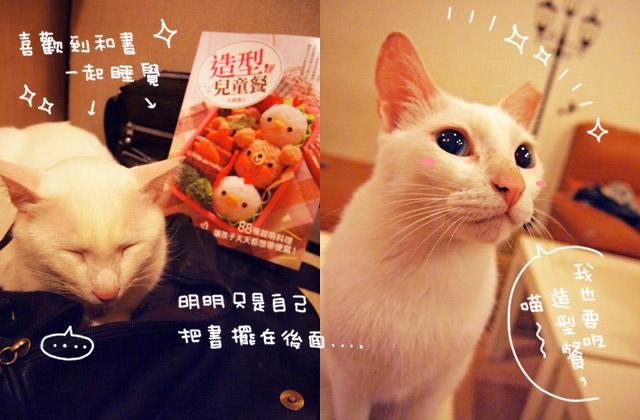 〔新書開箱〕古露露的第二本書,幸福造型兒童餐 ♥