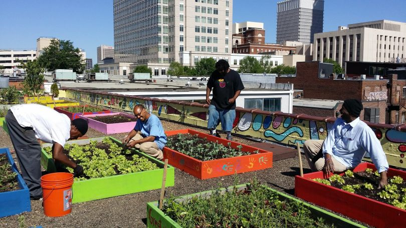 Residents of the Metro Atlanta Task Force plant on the shelter's rooftop garden.